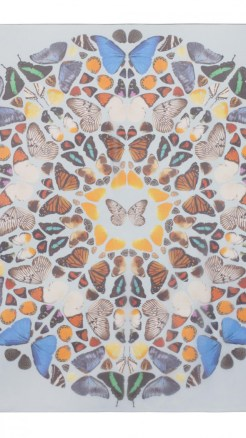 alexander mcqueen- Damien hirst butterfly white scarf with colors
