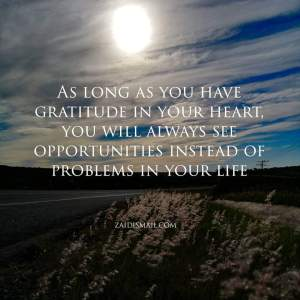 Read more about the article Gratitude, the root of peace
