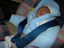 As a newborn
