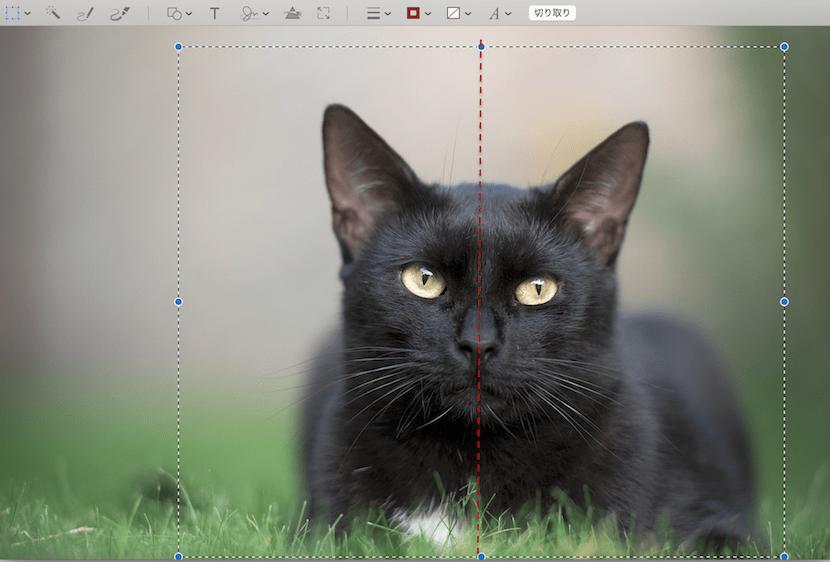 Macで画像のミラーを行う方法
