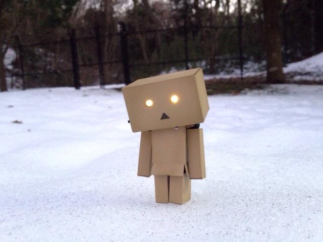積雪で佇む