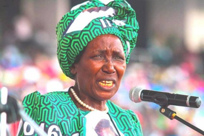 VP Inonge Wina – Cadres out to destroy PF's image
