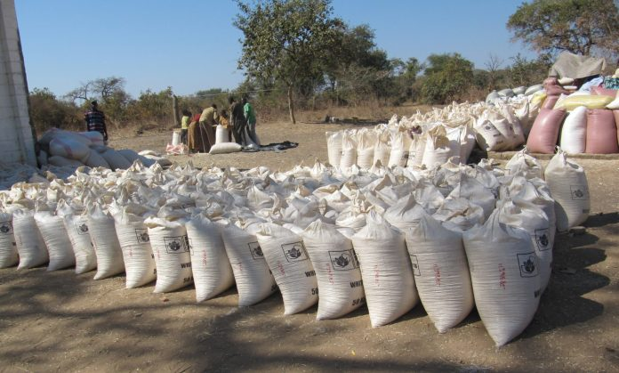FRA to buy 30 400 metric tonnes of maize in Mbala