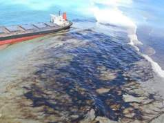 Japan and France said they will send disaster relief teams to investigate Mauritius oil spill