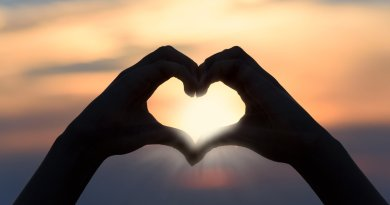 111 Best Proverbs About Love