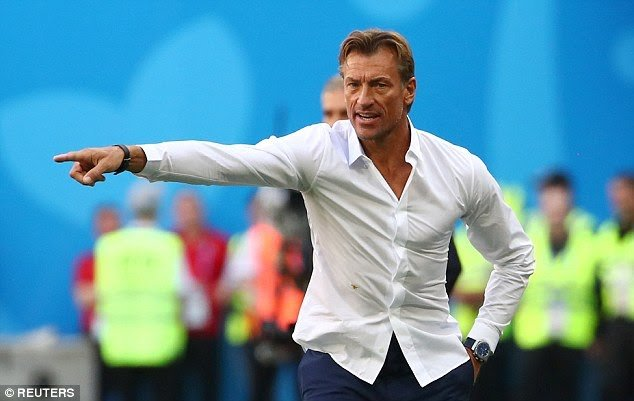 Ridiculously good looking Moroccan football coach Herve Renard, who 'looks like your mom's new boyfriend', wins the hearts of World Cup fans