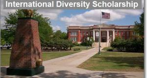 International Diversity Scholarship