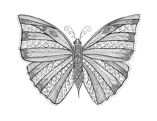 tshirtbutterfly