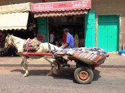 Horse and cart - Assilah Morocco