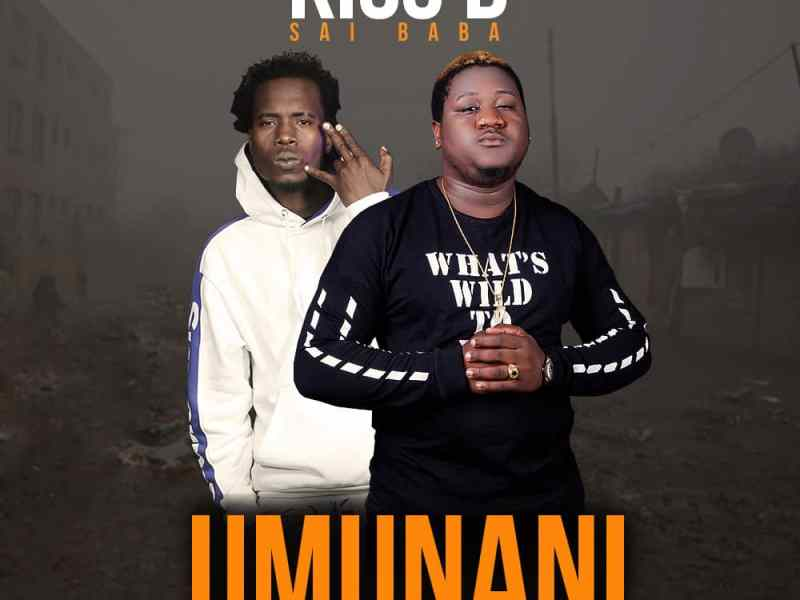 Kiss B Sai Baba ft Y Celeb (408 Empire) Umunani