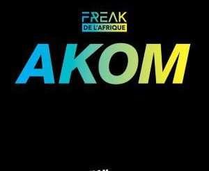Freak De L'Afrique – Akom (DJ Satelite Remix), Freak De L'Afrique, Akom, DJ Satelite Remix, mp3, download, mp3 download, cdq, 320kbps, audiomack, dopefile, datafilehost, toxicwap, fakaza, mp3goo