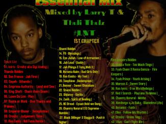 MIXTAPE, Mzansi Reggae Essential Mix, LNT Sound, Mzansi Reggae, Mzansi, Reggae, download ,zip, mixtapes, fakaza, datafilehost, zippyshare