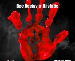 Bee Deejay, DJ Static, Stolen USB, mp3, download, datafilehost, fakaza, Afro House 2018, Afro House Mix, Deep House Mix, DJ Mix, Deep House, Deep House Music, Afro House Music, House Music, Gqom Beats, Gqom Songs