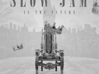 DJ Ace, Emazulwini Slow Jam, mp3, download, datafilehost, toxicwap, fakaza, Dj Mix