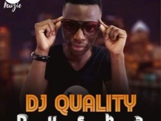 DJ Quality, Dusha, Muvo De Icon, Zolan G, Portia Da King, mp3, download, datafilehost, fakaza, Afro House 2018, Afro House Mix, Afro House Music