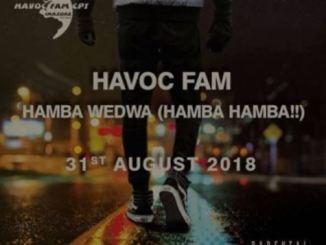 Havoc Fam, Hamba Wedwa, mp3, download, datafilehost, fakaza, Afro House 2018, Afro House Mix, Afro House Music, House Music