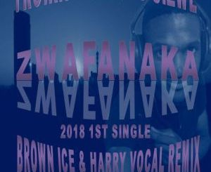Troika Musiq, Zwafanaka ,Brown Ice, Harry, Remix, Sizwe, mp3, download, datafilehost, fakaza, Afro House 2018, Afro House Mix, Afro House Music