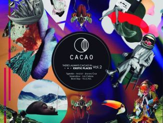 VA, There's Always Cacao In Exotic Places Vol. 2, download ,zip, zippyshare, fakaza, EP, datafilehost, album, Afro House 2018, Afro House Mix, Afro House Music, House Music