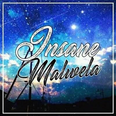 DeMajor, Traveller (Insane Malwela Remix), Lizwi, mp3, download, datafilehost, fakaza, Afro House, Afro House 2019, Afro House Mix, Afro House Music, Afro Tech, House Music