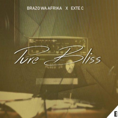 Brazo Wa Afrika, Exte C, Pure Bliss, mp3, download, datafilehost, fakaza, Afro House, Afro House 2019, Afro House Mix, Afro House Music, Afro Tech, House Music