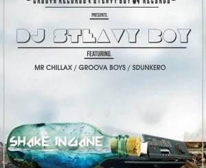 DJ Steavy Boy, Shake Ingane, Mr. Chillax, Groova Boys, Sdunkero, mp3, download, datafilehost, fakaza, Gqom Beats, Gqom Songs, Gqom Music, Gqom Mix, House Music