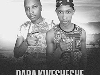 Dj Mimmz Africa %E2%80%93 Raba Kwesheshe Ft. Cupid zamusic - Dj Mimmz Africa – Raba Kwesheshe Ft. Cupid