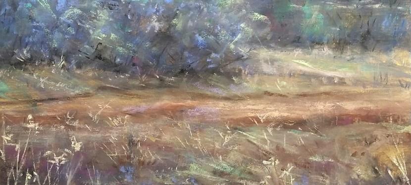 Pastel Lago Vista Meadow