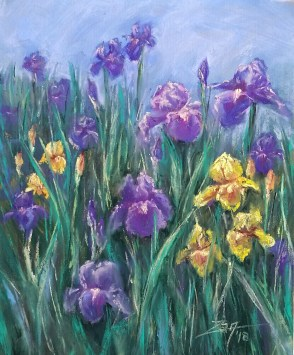 Iris Patch 8x10 soft pastels © Zan Savage All images are Zan Savage originals. Copying, altering, printing or redistribution of any images without written permission from the Artist is strictly prohibited.