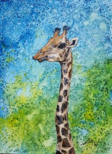 Giraffe 9x12 acrylic © Zan Savage Image is a Zan Savage original. Copying, altering, printing or redistribution of any images without written permission from the Artist is strictly prohibited.