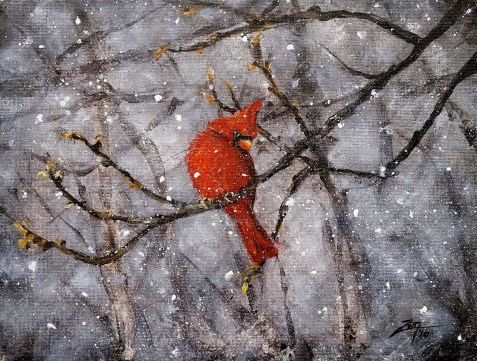 Cardinal in Snow 9x12 acrylic ©Zan Savage Image is a Zan Savage original. Copying, altering, printing or redistribution of any images without written permission from the Artist is strictly prohibited.