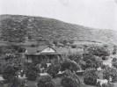 Ochard in El Cajon ca. time of novel