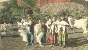 Navaho children and baby goats;  Photo from Florence Barker photograph collection