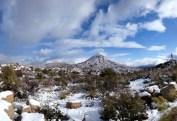 Credit: Tonto Basin Ranger District