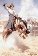 http://www.mardecortesbaja.com/wordpress/wp-content/uploads/rodeo-rider.jpg
