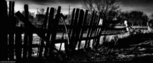 The Last Fence Standing