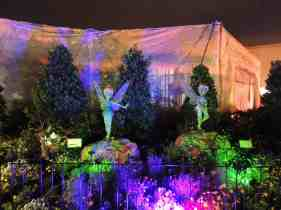 Tinker Bell topiary at night