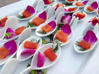 Cranberry and Sea Salt Cured Wild Salmon