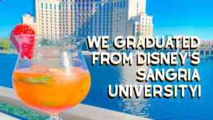 Sangria University