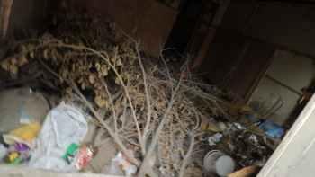 мусор в помещении