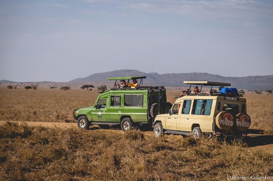 Safari na džípoch v Serengeti v Tanzánii