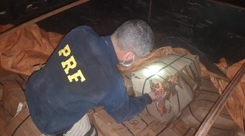 Mais de 5.5 ton de camarão impróprios para consumo são apreendidos pela PRF