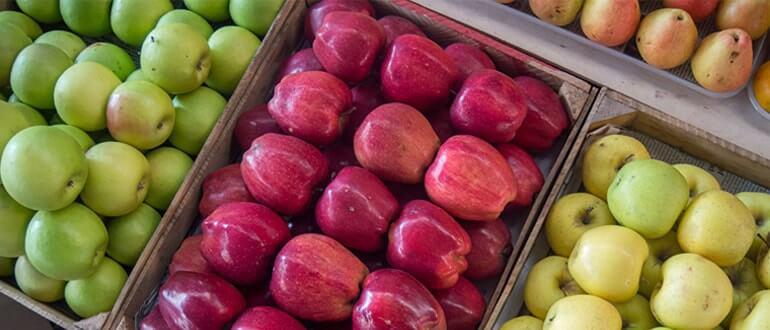 Яблоки закрепляют или слабят