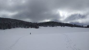 Walking over the snow fields