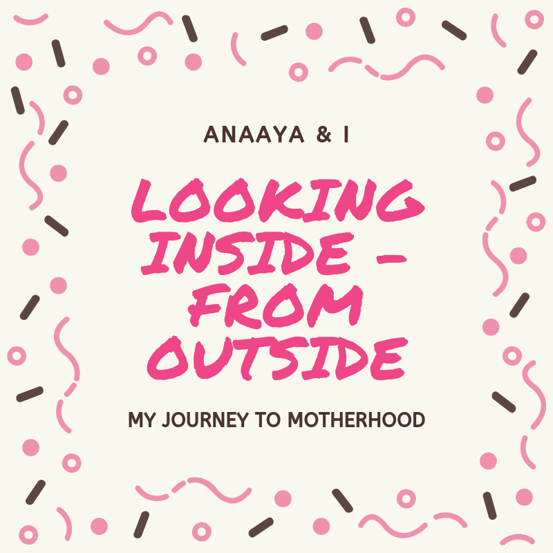 Blog 243 - Anaaya & I - 12 - Looking inside – from outside....png