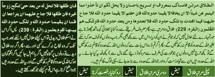triple-talaq-in-islam-halalah-surah-baqarah-maulana-muhammad-khan-sherani-syed-atiq-ur-rehman-gailani(3)