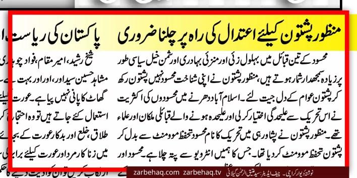 manzoor-pashtoon-pashtun-dharna-islamabad-sham-e-ghariban-trailer-truck-shahid-khaqan-abbasi-baloch-sindhi-muhajir-panjabi-nawaz-sharif-joota-