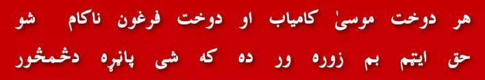 12-general-zia-ul-haq-zulfiqar-ali-bhutto-mrd-murtaza-bhutto-mufti-mehmood-ghulam-ghaus-hazarvi-islami-referendum-ayub-khan-establishment-ptm