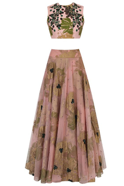 Bhumika Sharma Pink and Green Floral Bunch Embroidered Lehenga Set