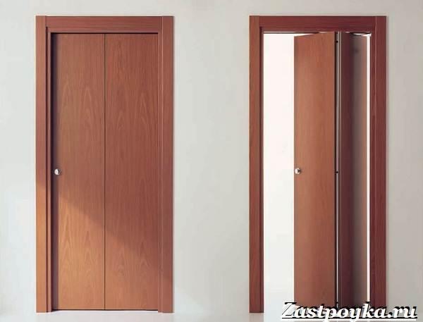 Межкомнатные-двери-гармошка-Описание-виды-и-установка-дверей-гармошка-13