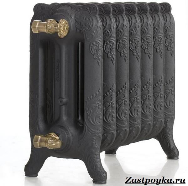 Радиаторы-отопления-Описание-виды-установка-и-цены-радиаторов-отопления-13